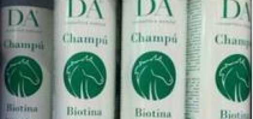 Champu-Biotina-Mercadona